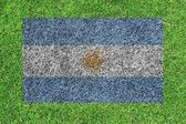 Flag of Argentina as a painting on green grass background — Stock Photo