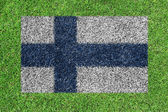 Flag of finland as a painting on green grass — Zdjęcie stockowe