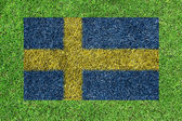 Flag of Sweden as a painting on green grass — Zdjęcie stockowe