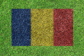 Flag of Romania as a painting on green grass — Stock Photo