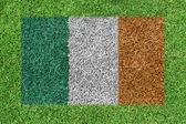 Flag Republic of Ireland as a painting on green grass — Stock Photo