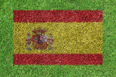 Flag Spain as a painting on green grass — Stock Photo