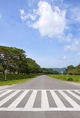 Zebra traffic walk way, cross way with blue sky — Stock Photo