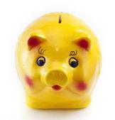 Piggy bank on white background — Stock Photo