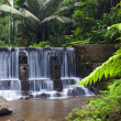 Tonsai waterfall Phuket, Thailand — Stock Photo