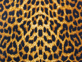 Leopard skin decorative background — Stock Photo