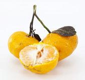Mandarin isolated on white background — Stock Photo