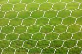 Cerrar el fútbol blanco neto, verde hierba — Foto de Stock