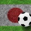 Soccer ball on japanese flag as a painting on green grass backgr — Stock Photo #24038023