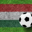 Soccer ball on Hungary flag as a painting on green grass — Stock Photo