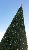 Big Christmas tree blue sky — Foto de Stock