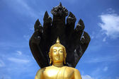 Buddha image protected by the seven-headed naga. — Stock Photo