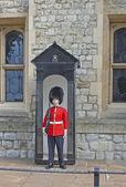 Royal Guard — Stock Photo