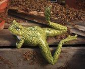 怠惰なカエル — ストック写真