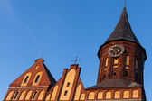 Cathedral, Kaliningrad — Stock Photo