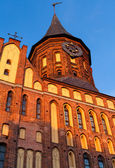 Cathedral, Kaliningrad — Stockfoto