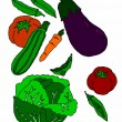 Variety of vegetables on white background — Stock Vector #47581253