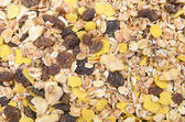 A pile of muesli breakfast food as food background — Stockfoto