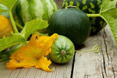 Watermelon, cantaloupe and zucchini with a flower — Stock Photo