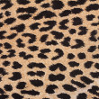 Stock Photo: Leopard fabric background