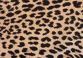 Leopard fabric background — Stock Photo