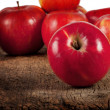 Red ripe apples — Stock Photo