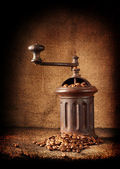 Old retro coffee grinder — Stock Photo