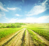 Dirt country road — Stock Photo