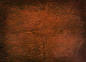 Vintage background of rough brown skin — Photo