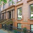 Постер, плакат: Brownstone Brooklyn