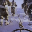 Rear view of Antarctic expedition — Stock Video