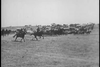 Covered wagon caravan rushing through prairie — Stock Video