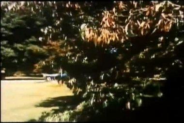 Voiture tirant vers le haut devant mansion — Vidéo