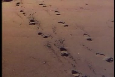 Rear view of couple walking and leaving footprints in the sand — Stock Video