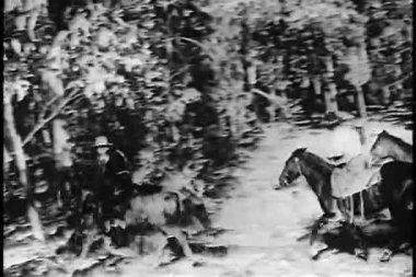 Cowboys rider genom skogen på hästryggen — Stockvideo