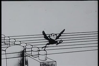 Cartoon vogel rupfen telefonleitungen wie gitarrensaiten — Stockvideo