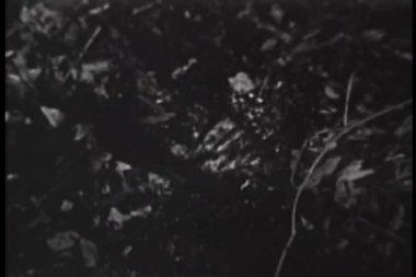 Närbild av hand drunkna i gungfly — Stockvideo