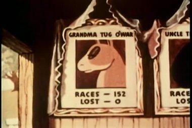 Koňské dostihy statistiky plakáty — Stock video