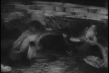 Mono ofreciendo comida para loros — Vídeo de stock