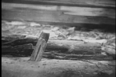 Close-up of hammer pounding stake into wood — Stock Video