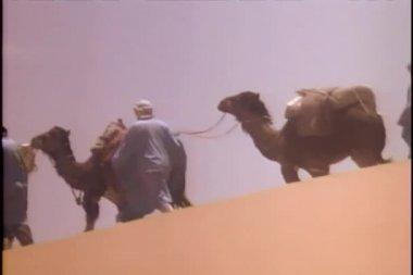 Caravan traveling through desert — Stock Video