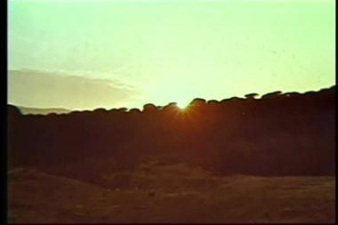 широкий угол обзора восхода солнца — Стоковое видео