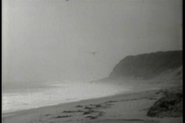 Small airplane landing on beach in the fog — Stock Video