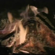 Close-up of log fire — Stock Video