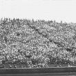 Wide shot of spectators at sporting event — Vidéo