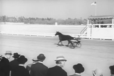 Spectators watching warm-up before harness race — Stock Video