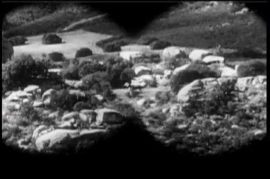 Binoculars point of view of horses walking in prairie — Stock Video
