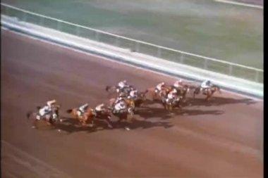 Wysoki kąt widzenia rasy koni — Wideo stockowe
