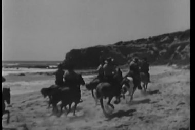 Cowboys on galloping horses riding across beach with dog following — Stock Video