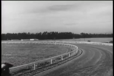 Rear view shot of horse race — Stock Video